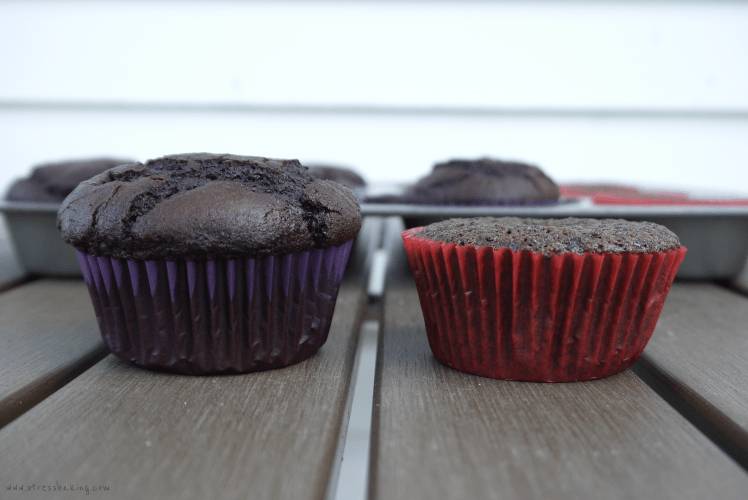 chococupcakes_compare