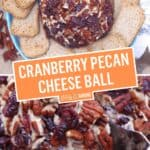 Cranberry Pecan Cheese Ball | Stress Baking