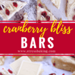 Cranberry Bliss Bars: My version of Starbucks' white chocolate and cranberry treat - save money and get just as much holiday flavor by making Cranberry Bliss Bars at home! | stressbaking.com