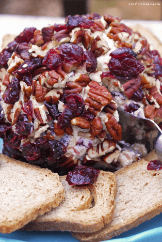 Cranberry Pecan Cheese Ball: This creamy cheese combination paired with tart cranberries and crunchy pecans make this the perfect shareable snack or appetizer for Thanksgiving or other holiday celebrations!   stressbaking.com #stressbaking #holidays #thanksgiving #christmas #cheeseball #apps #appetizer