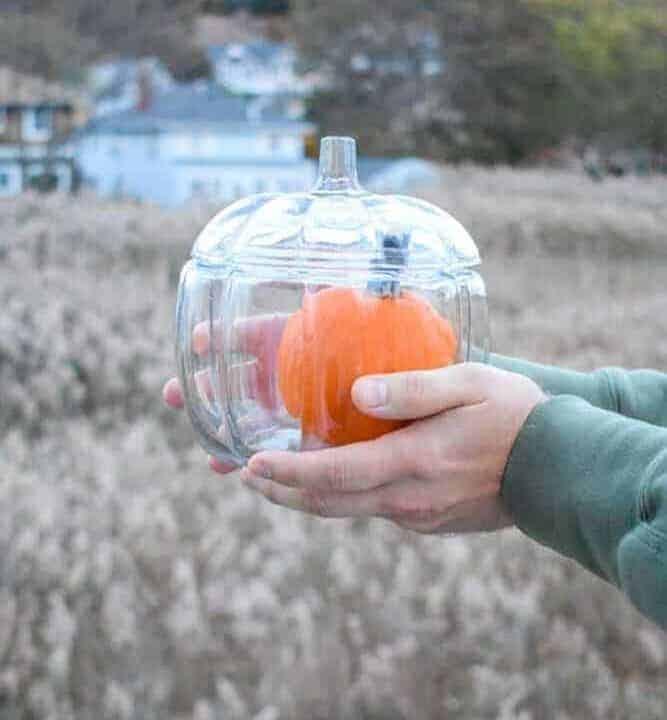 Pumpkin in a glass pumpkin container