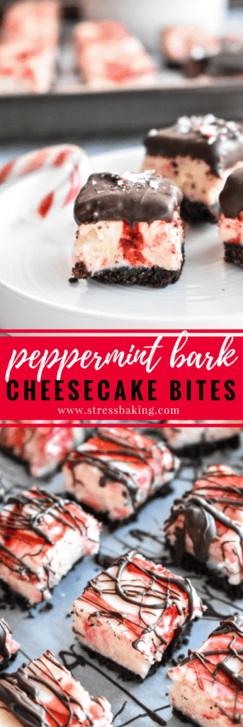 Peppermint Bark Cheesecake Bites: A chocolate cookie crust is topped with creamy and rich peppermint cheesecake, loaded with white chocolate peppermint pieces, crushed candy canes and topped off with more chocolate. Bite-sized holiday dessert perfection! | stressbaking.com