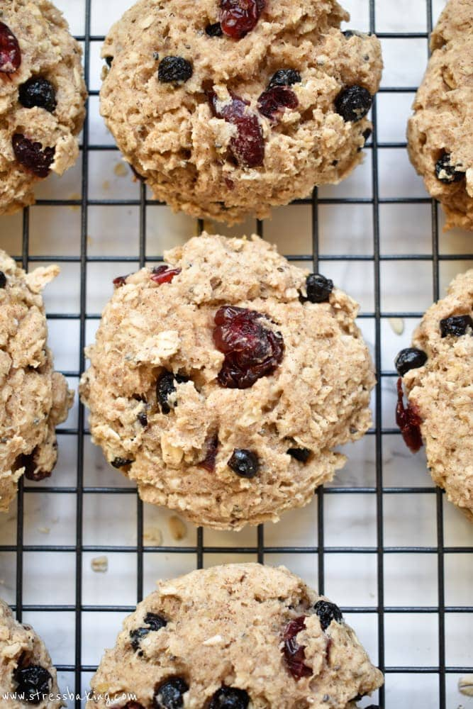 Paleo Banana Berry Breakfast Cookies: Super soft, chewy banana cookies filled with dried berries - perfect for a grab and go breakfast! Gluten free, dairy free, and refined sugar free. #glutenfree #dairyfree #refinedsugarfree #cookies #breakfast #breakfastcookies #healthybreakfast #grabandgo #paleo