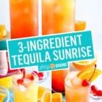 Tequila Sunrise   Stress Baking