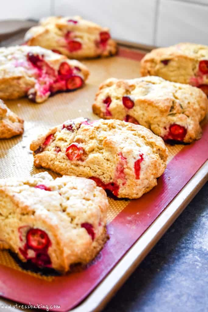 Angled shot of many vibrant cranberry scones on a baking mat