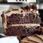 Double Chocolate Layer Cake (Chocolate Mayonnaise Cake)
