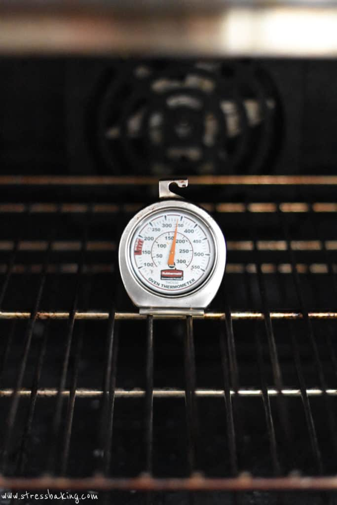 An oven thermometer placed on the center rack in the middle of an oven