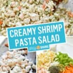 Creamy Shrimp Pasta Salad | Stress Baking